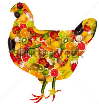 stock-photo-collage-of-a-chicken-composed-of-fruit-and-vegetables-119991586
